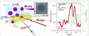 铁磁纳米颗粒系统显示出超高速自旋电子学的前景。