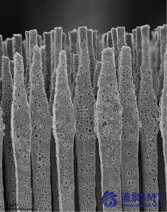 高性能组合:硅和硫电池